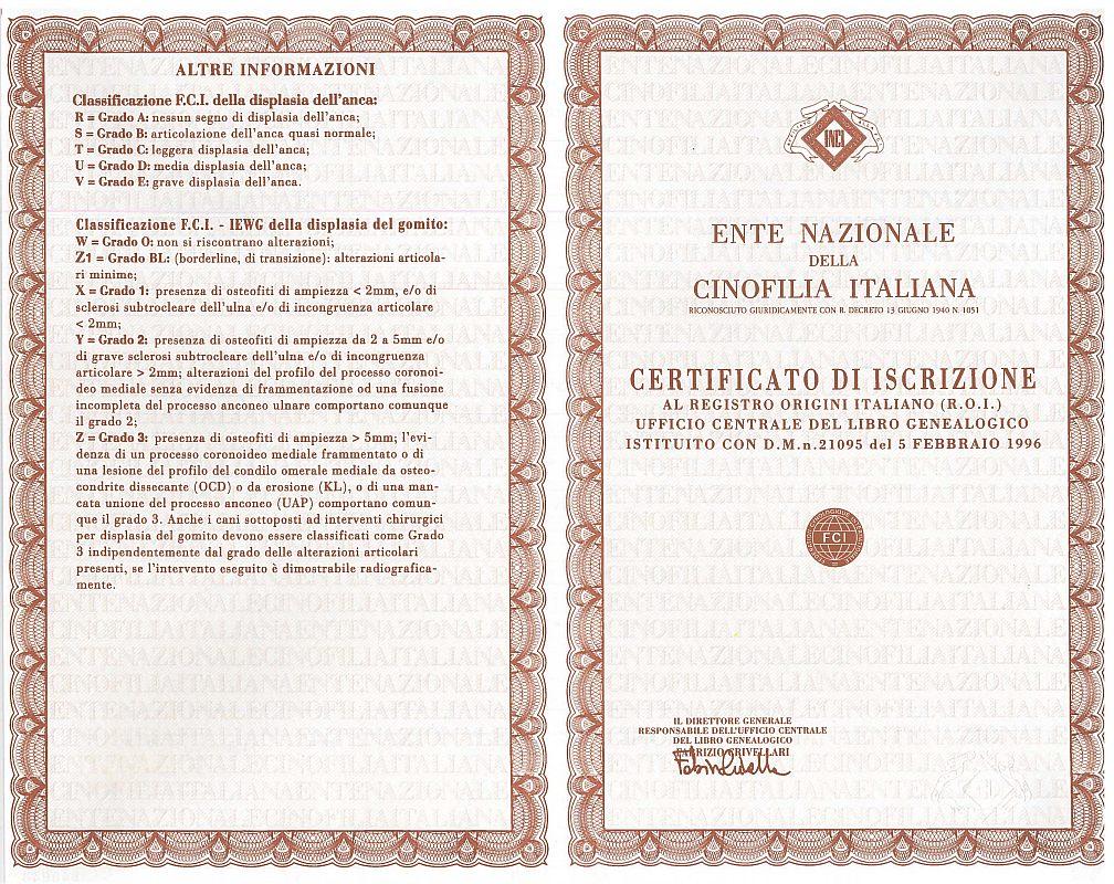 pedigree garantito e certificato